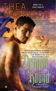 Audiobook Review:  Dragon Bound by Thea Harrison