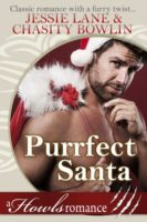 Review:  Purrfect Santa by Jessie Lane and Chasity Bowlin