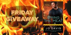 Friday Giveaway:  Bring the Heat by Jo Davis