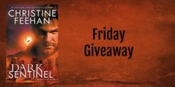 Friday Giveaway:  Dark Sentinel by Christine Feehan