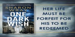 Spotlight:  One Dark Wish by Sharon Wray