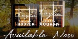 Spotlight:  Layla by Colleen Hoover