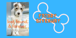 Friday Giveaway:  Lost, Found and Forever by Victoria Schade