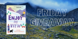 Friday Giveaway:  Enjoy the View by Sarah Morgenthaler